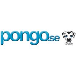 pongo