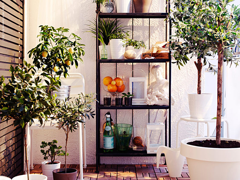 Inreda balkongen med växter